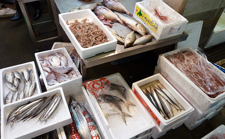 木津卸売市場_魚