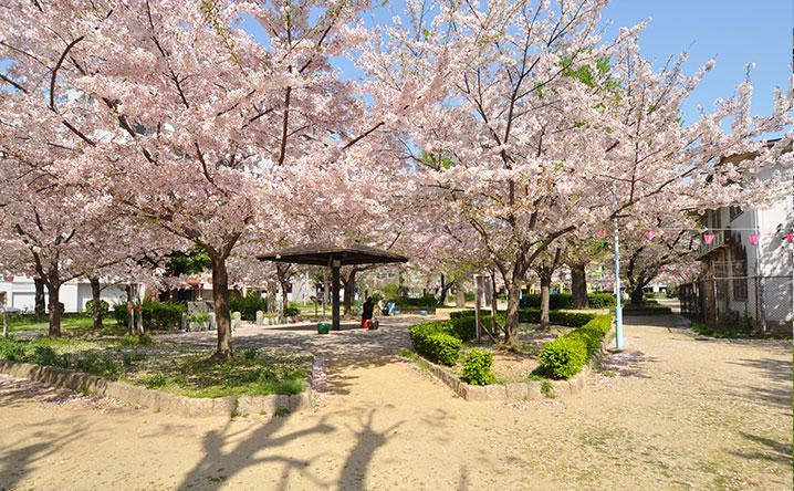 大国町の公園