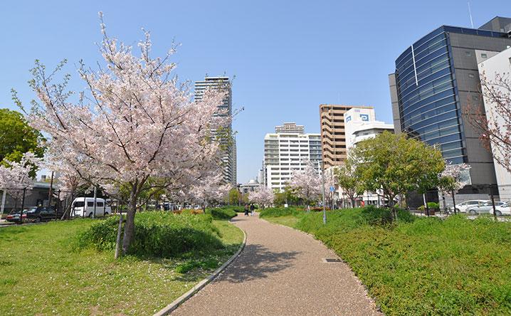 難波塩草敷津公園