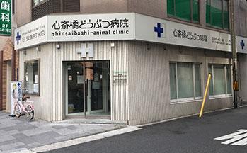 心斎橋動物病院